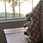 pinheiro tecido 10