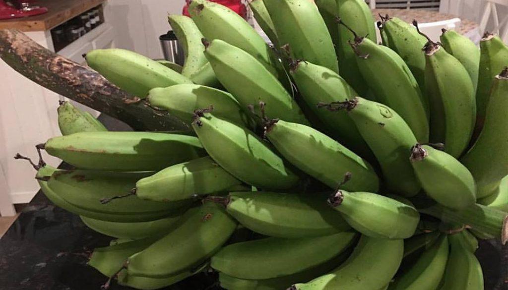 Biomassa de Banana Verde - Rubia Rubita Home