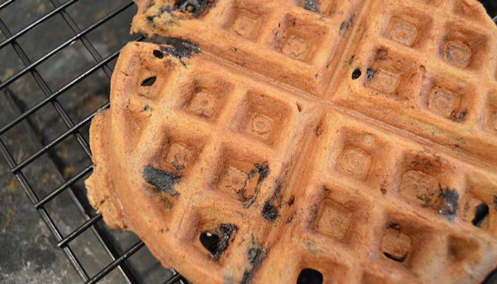 Waffle sem glúten e sem lactose - Rubia Rubita Home